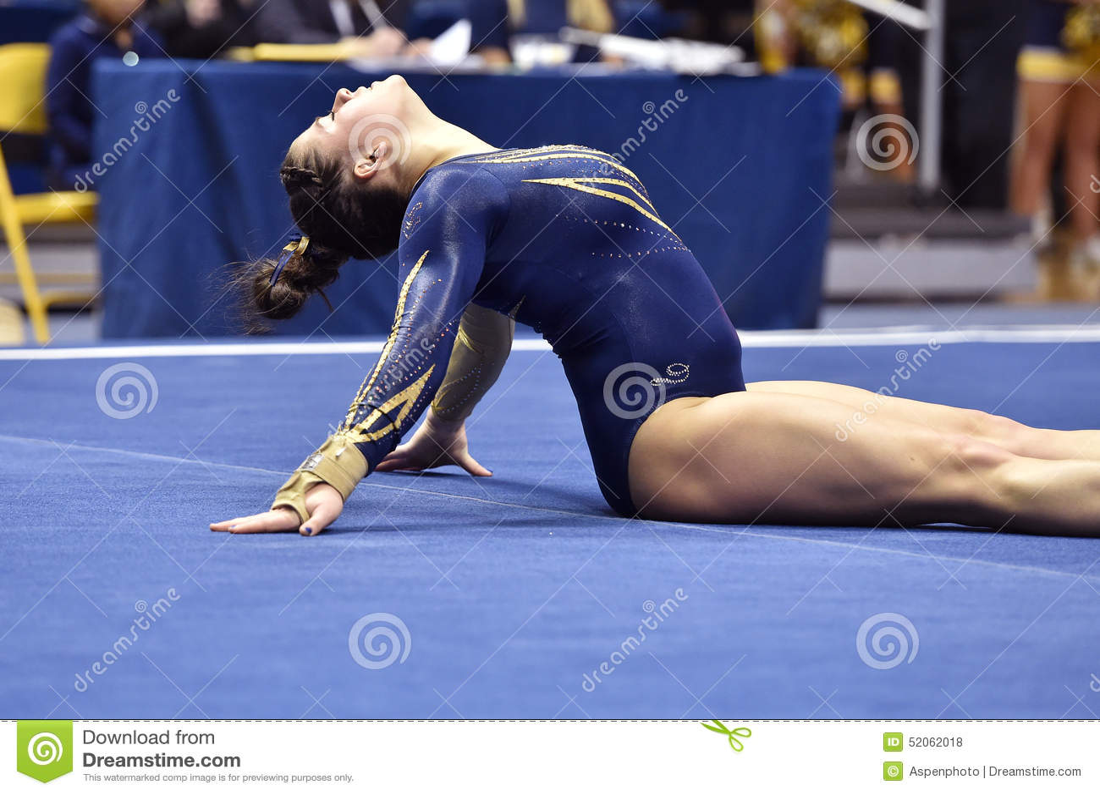 wcgc gymnastics state meet
