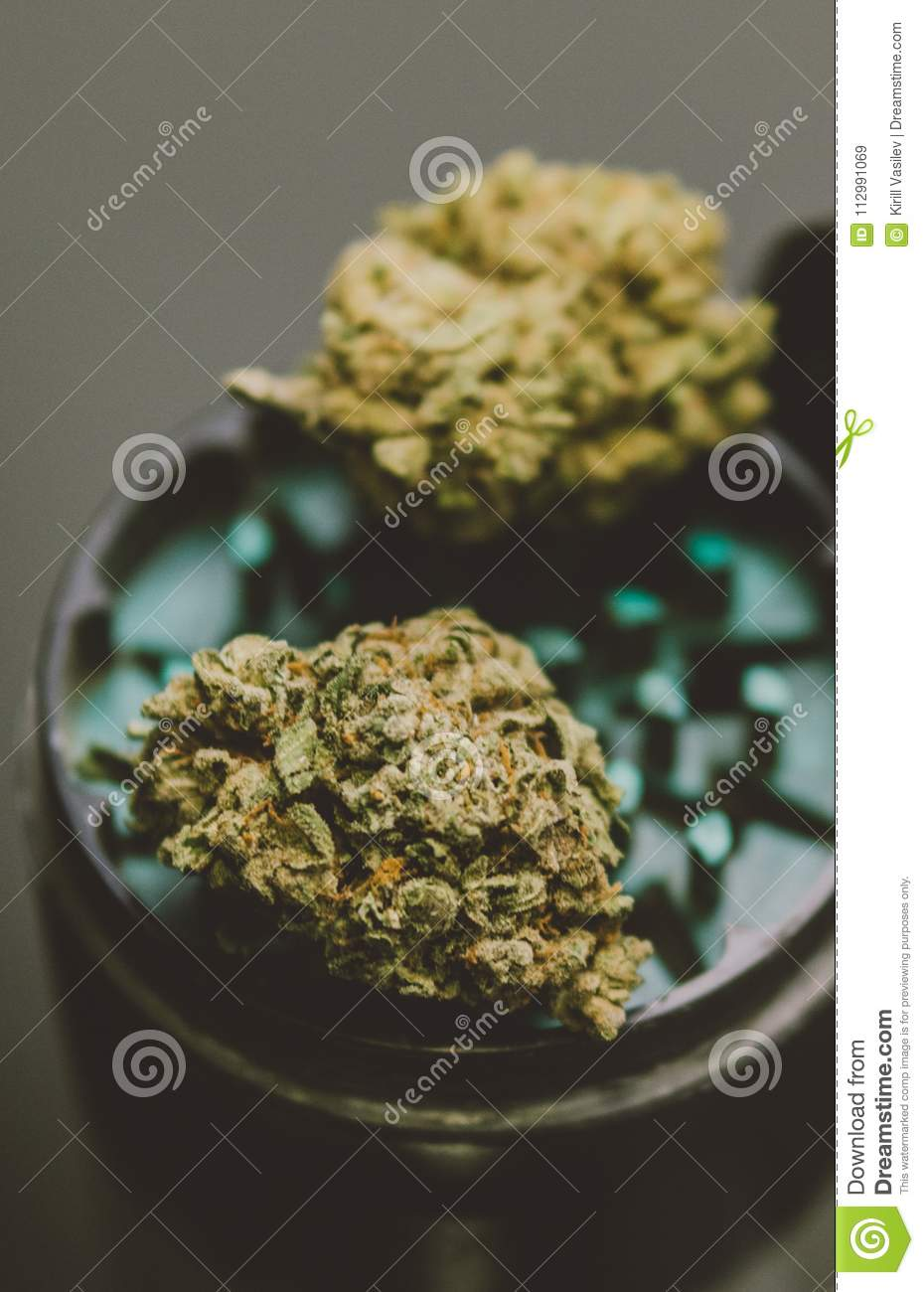 NClose-up of buds of marijuana lying on a metal grinder. Insta size for publication in stories