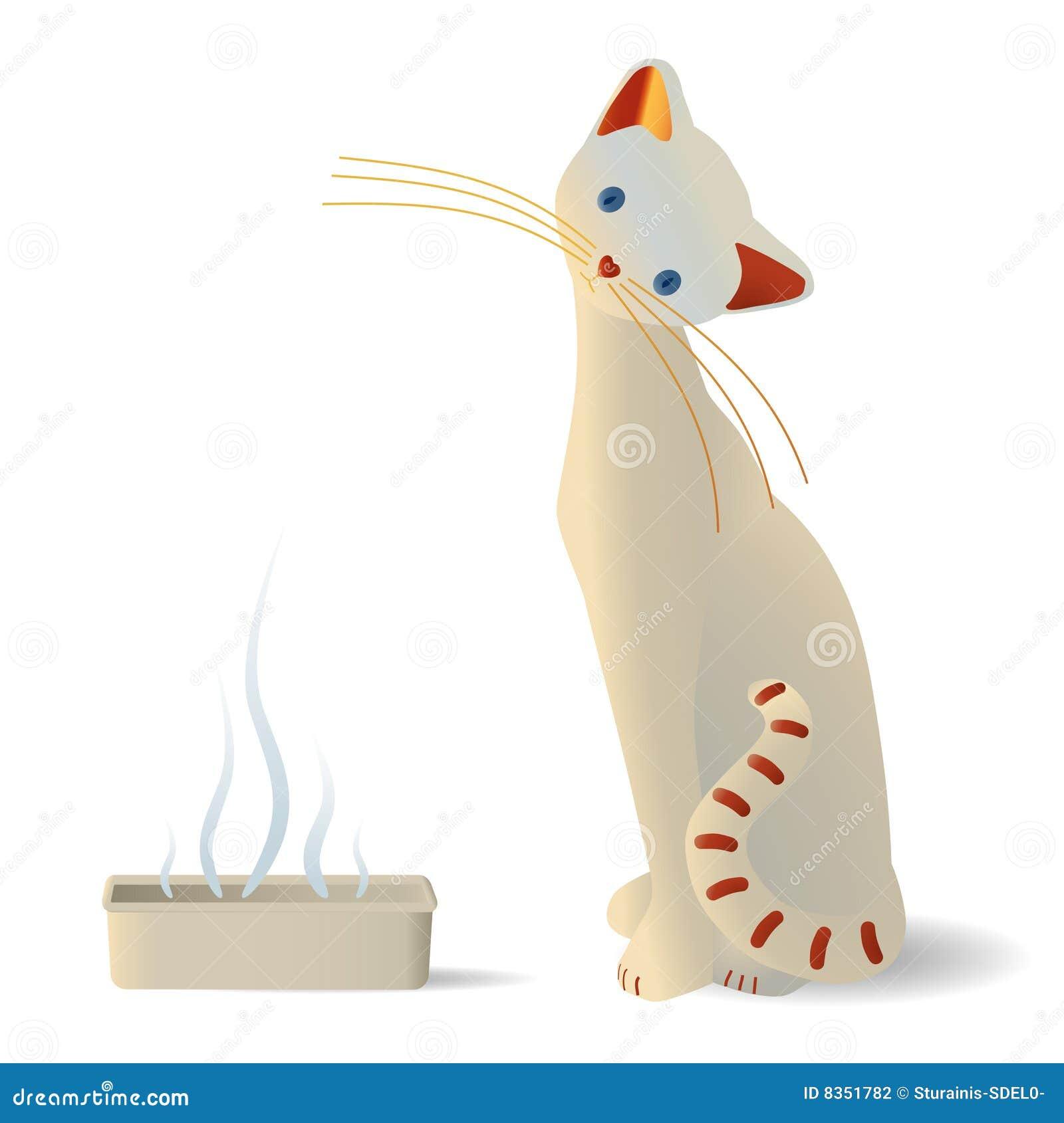 Cat Litter Smelly