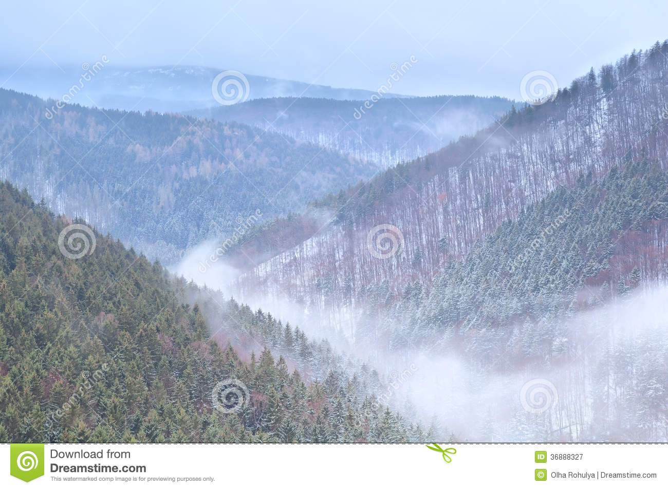 Download Nebbia In Montagne Di Harz Di Inverno Immagine Stock - Immagine di annuvolamento, people: 36888327