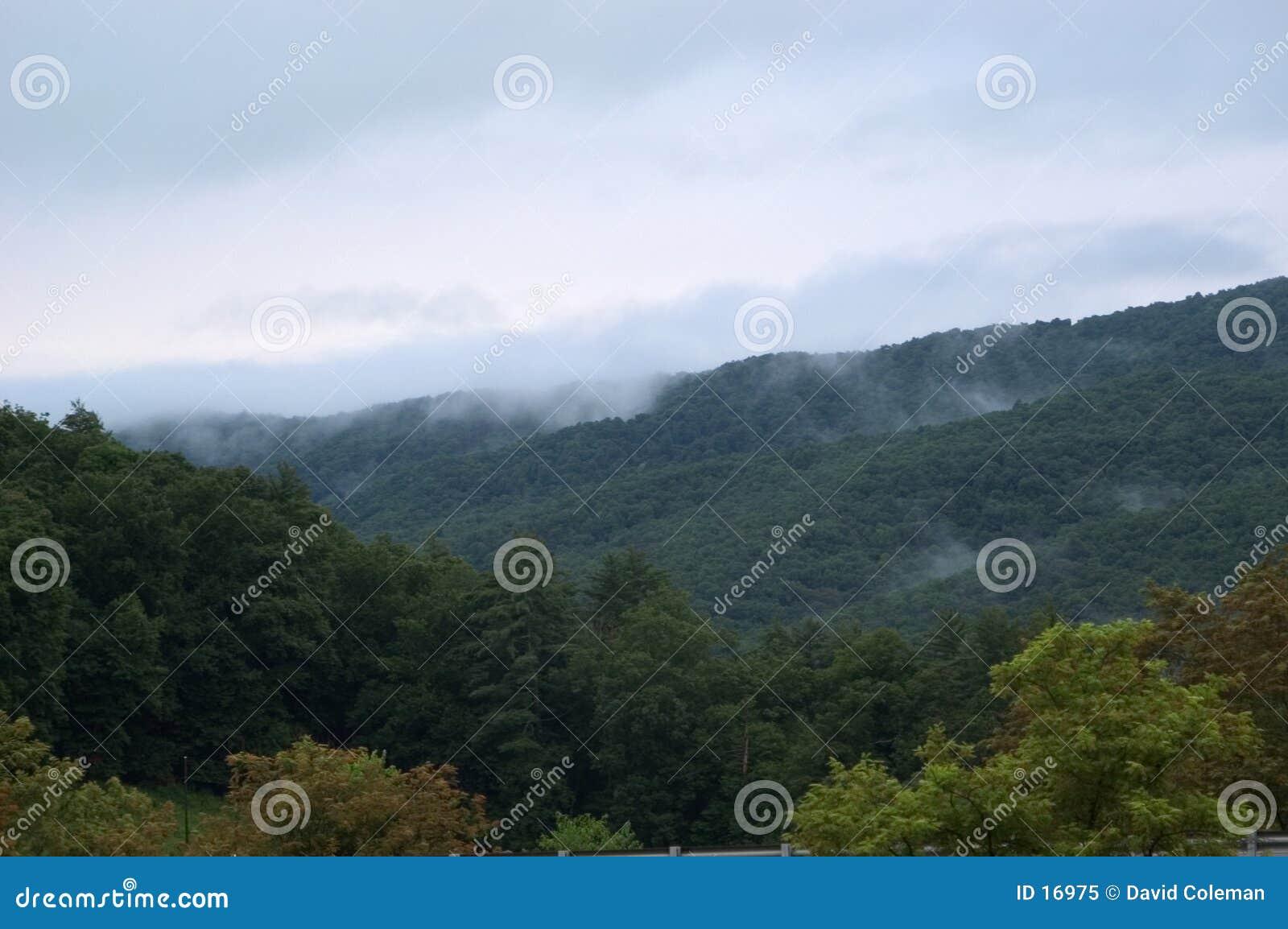 Nebbia nelle montagne