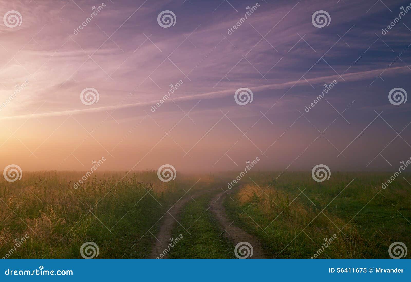 Nebelige Morgenwiese Sommerlandschaft mit grünem Gras, Straße und Wolken