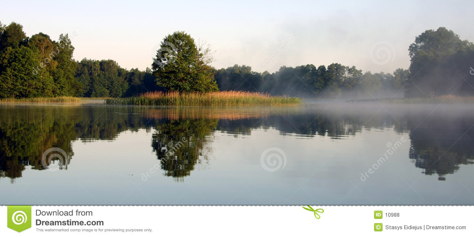 Nebeliger Morgen durch den See, V