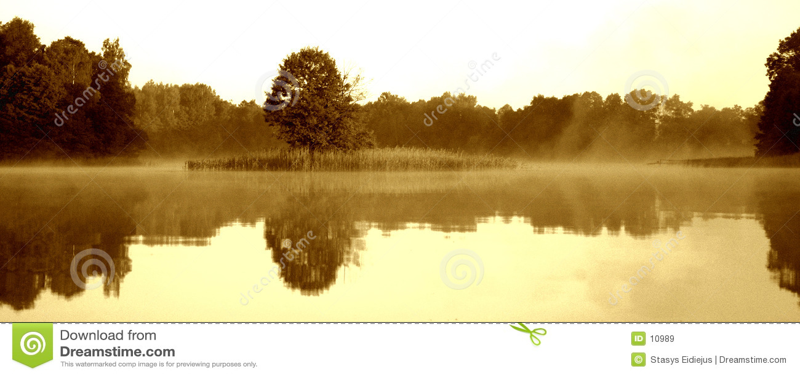 Nebeliger Morgen durch den See, VI
