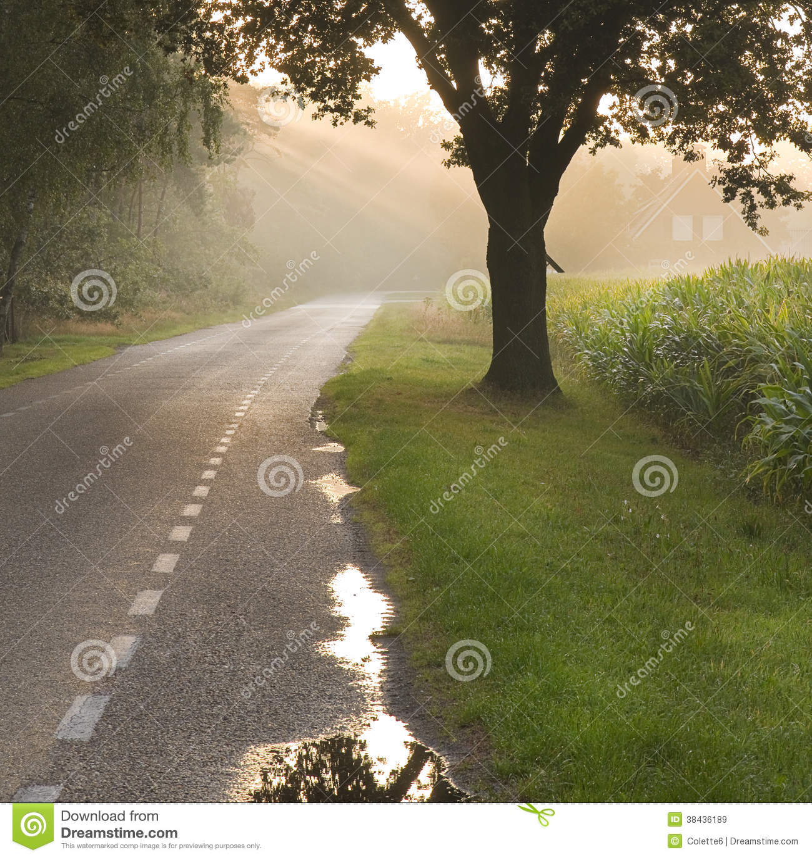Nederlands landweg en landbouwbedrijf