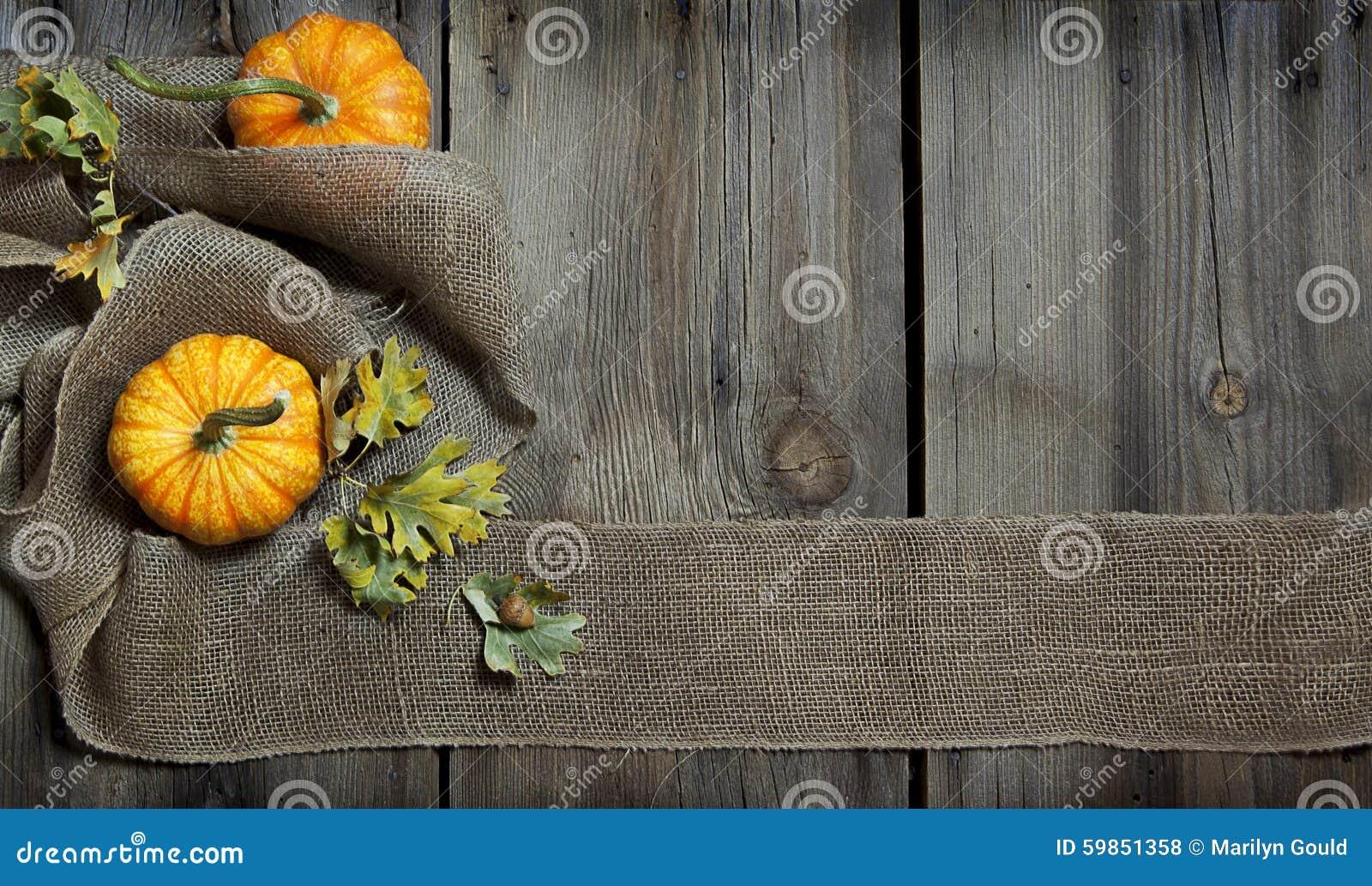 Nedgång Autumn Banner