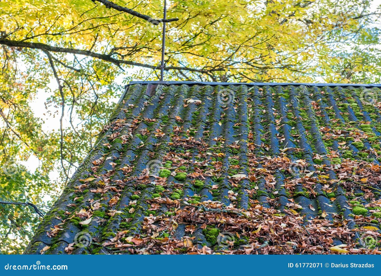 Nedgångsidor på ett tak