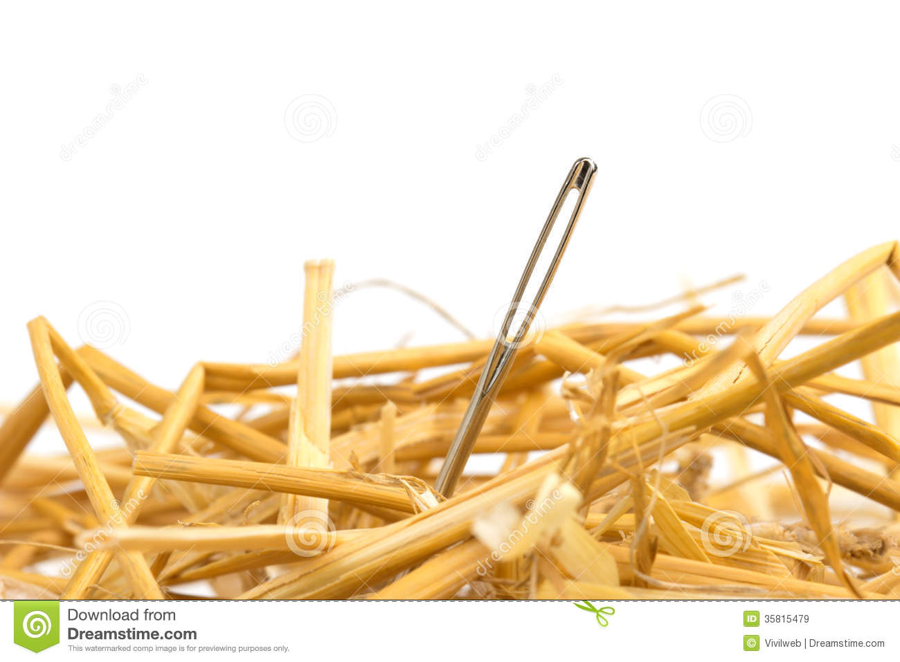 Needle Haystack Stock Photos, Images, & Pictures - 241 Images