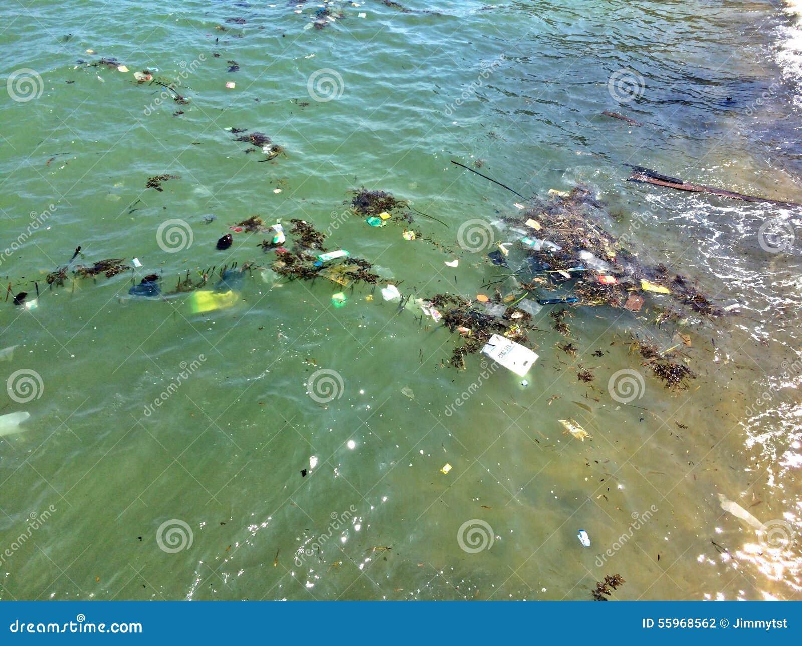 Neem nota van het groene water