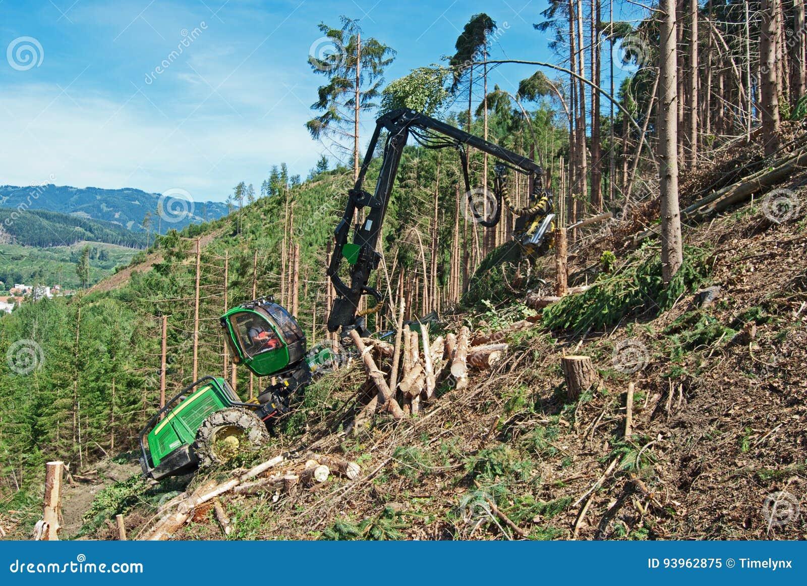 Neer geregistreerd bos