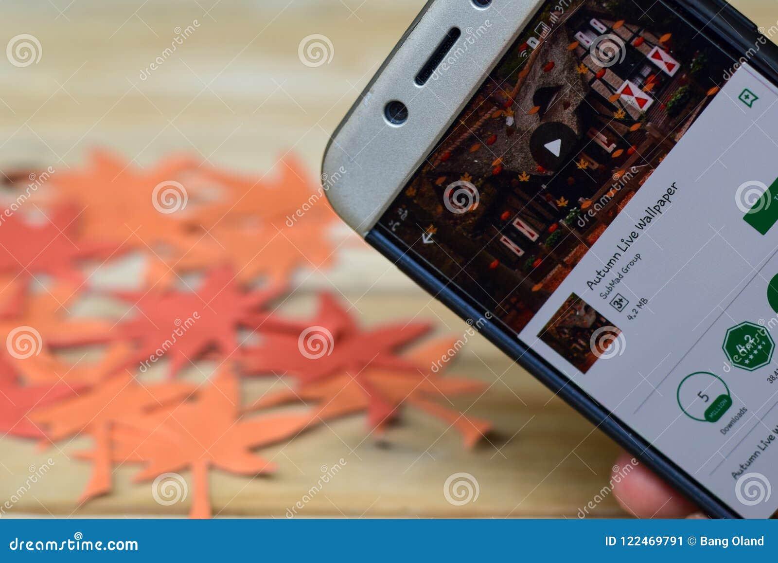 Negocio App De Whatsapp En La Pantalla De Smartphone Autumn