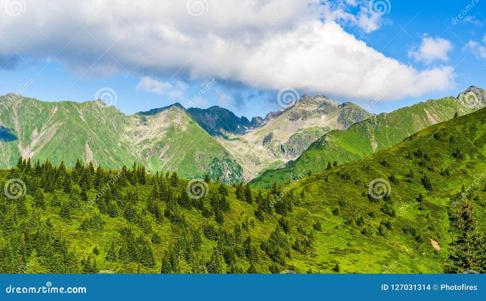 Negoiu Peak at 2535m altitude in Fagaras Carpathians Mountains. Fagaras Mountains, Romania: Panoramic view towards the summit of Negoiu Peak at 2535m altitude Stock Images