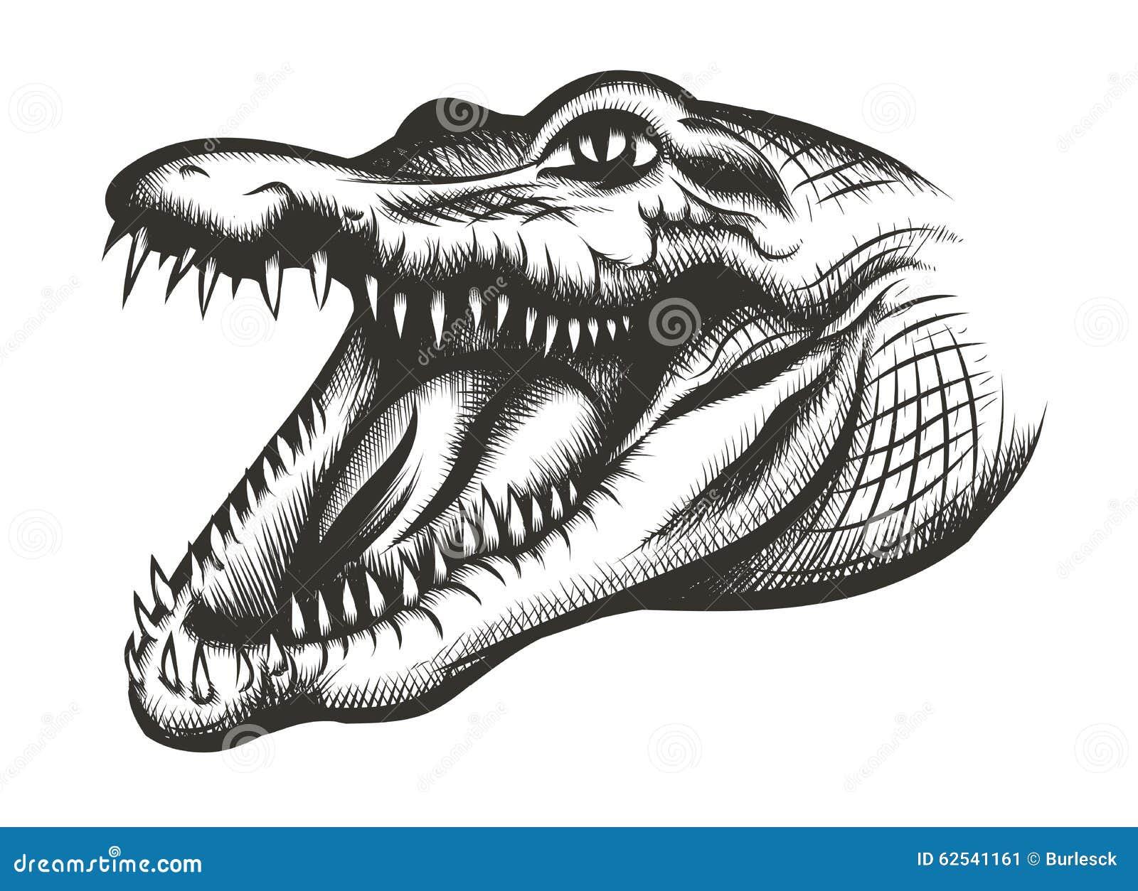 Negro principal del cocodrilo