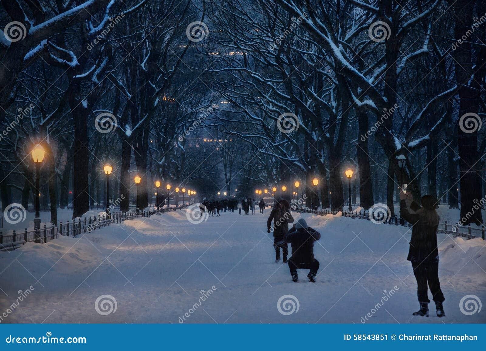 Neige chez Central Park