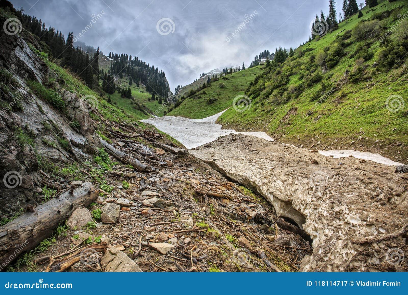 Neige des avalanches en gorge