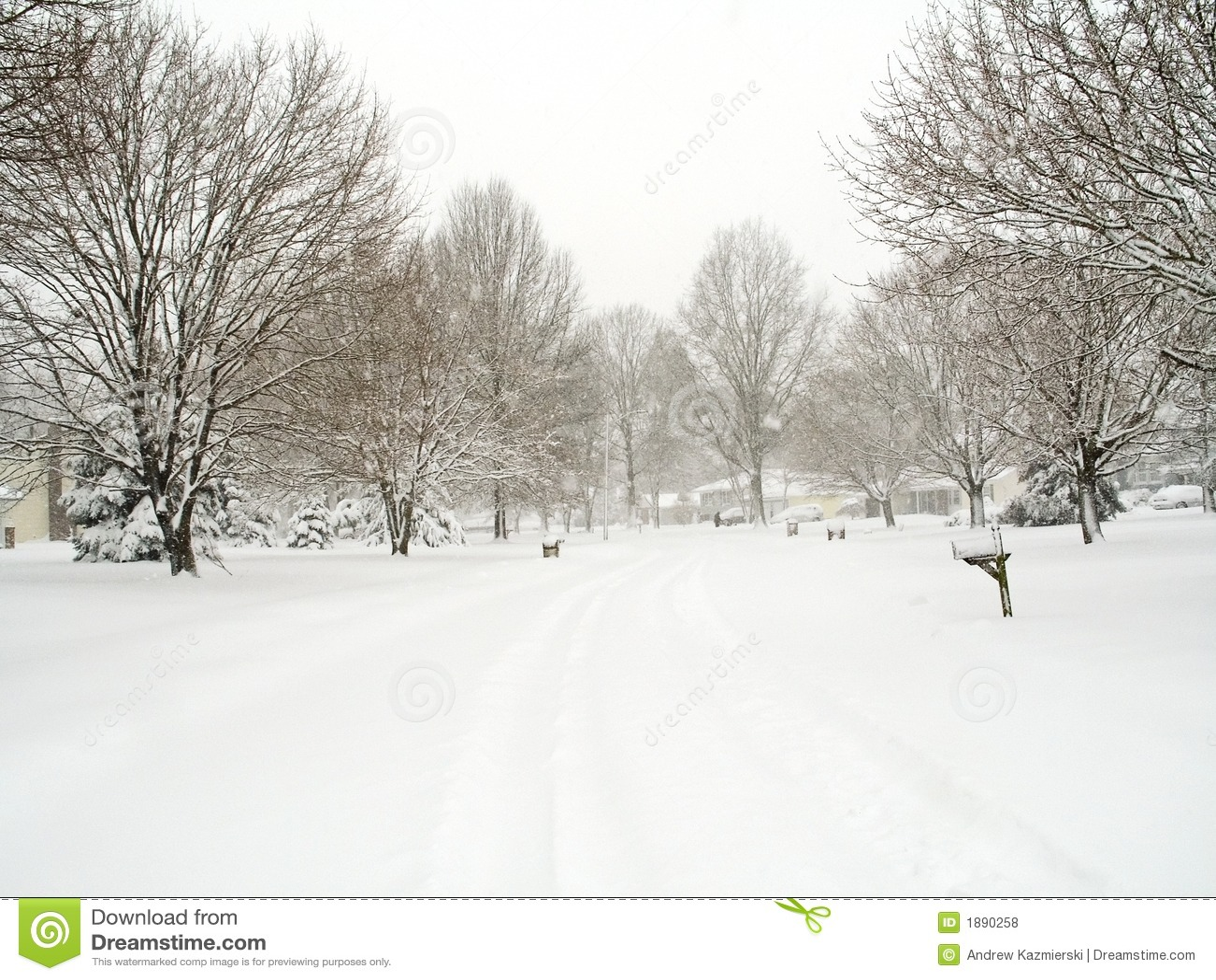 Neighborhood Snow Stock Photo Image Of Christmas House