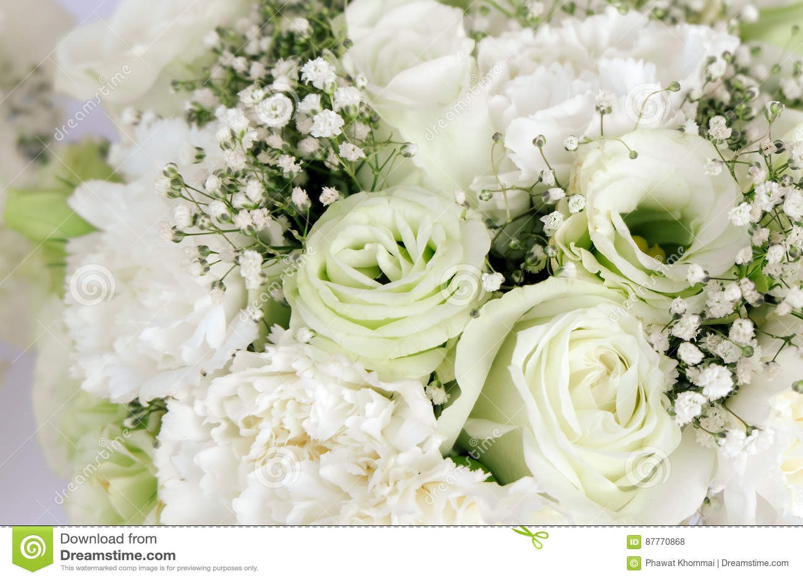 Nejlika för vita rosor för blom- ordning för bukett och gypsophilapaniculata