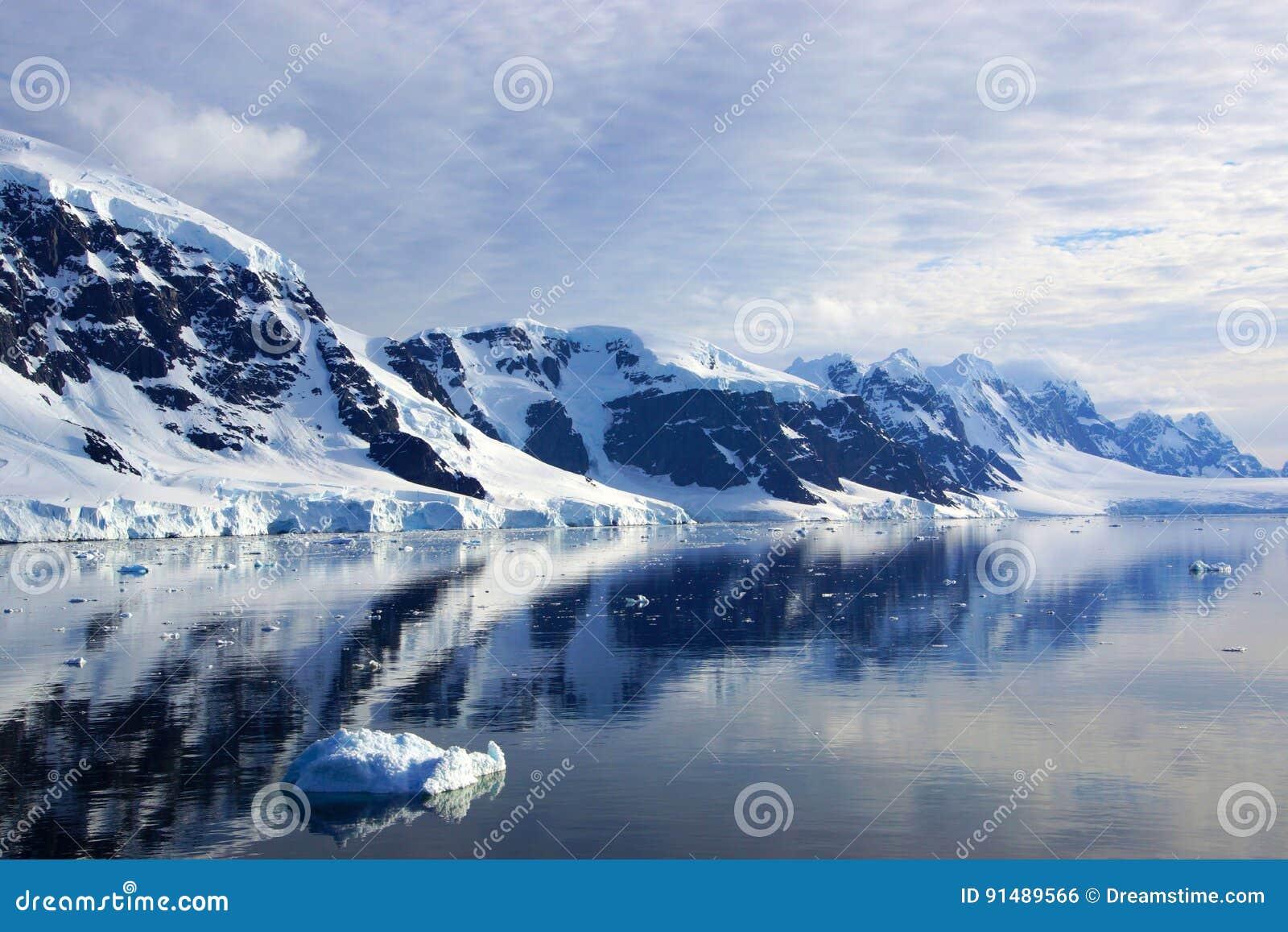 Neko Harbor, la Antártida