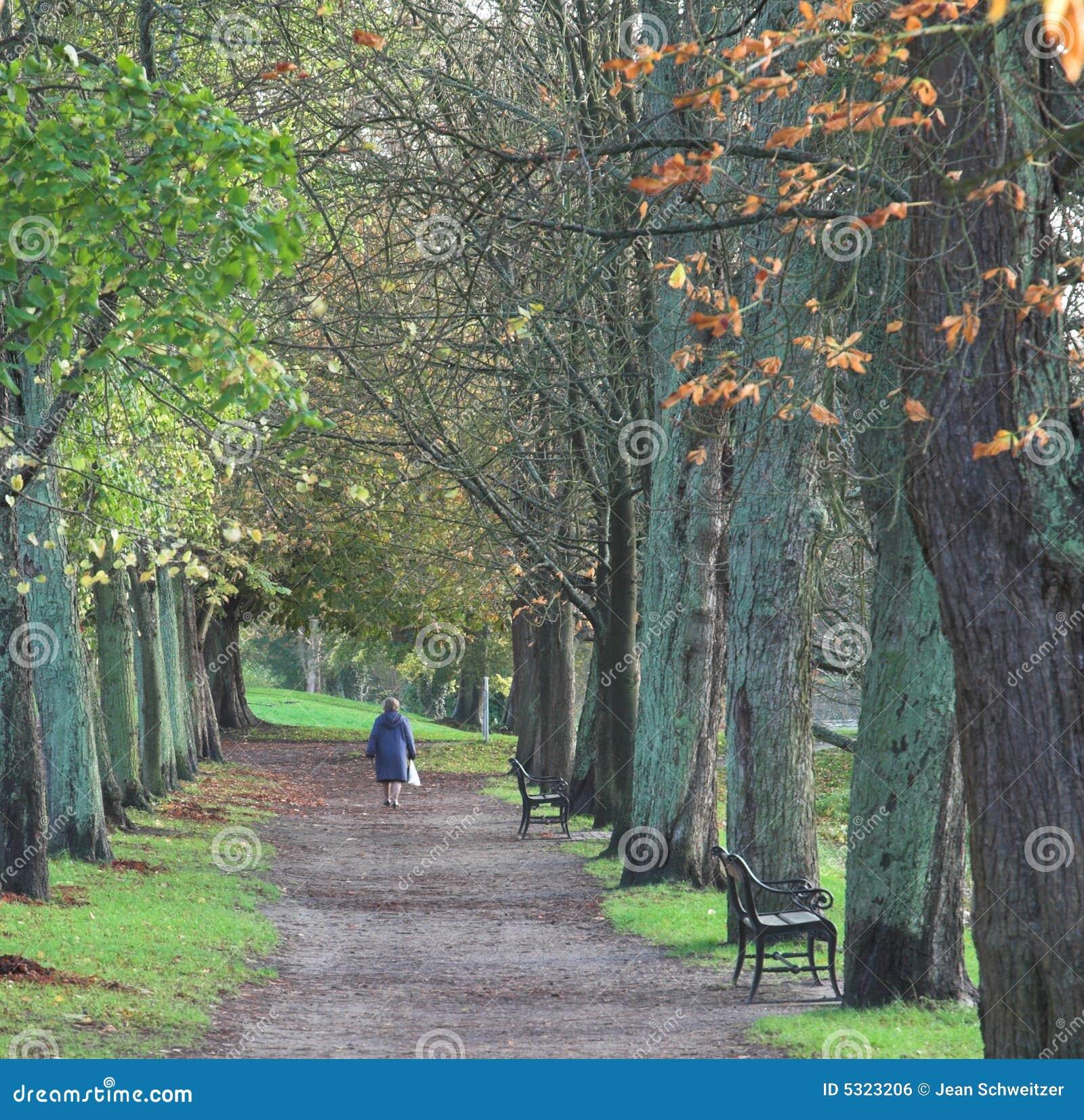 Download Nella foresta fotografia stock. Immagine di vestito, denmark - 5323206