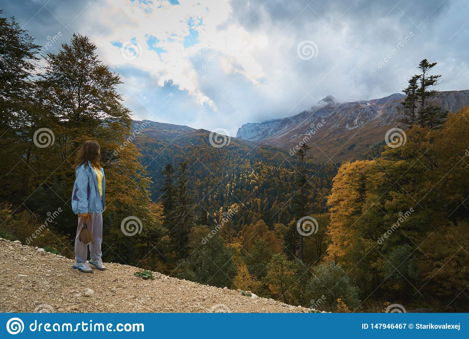 Nelle montagne, nella foresta, un giorno soleggiato luminoso
