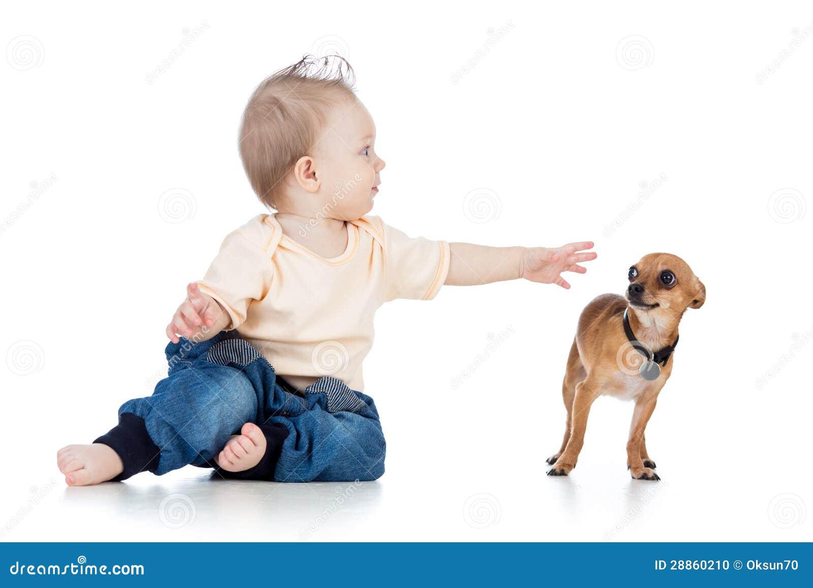 Neonato e cane divertenti su fondo bianco