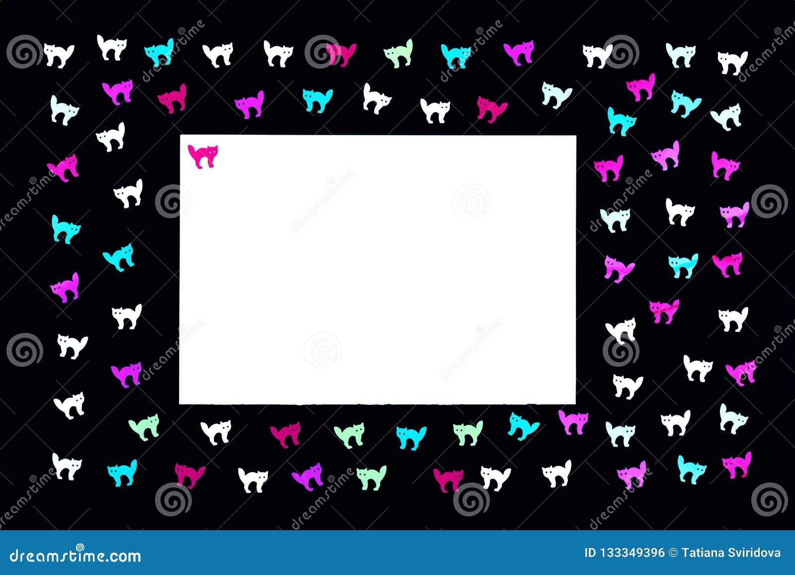 Neonowi koty na czarnym tło wzorze