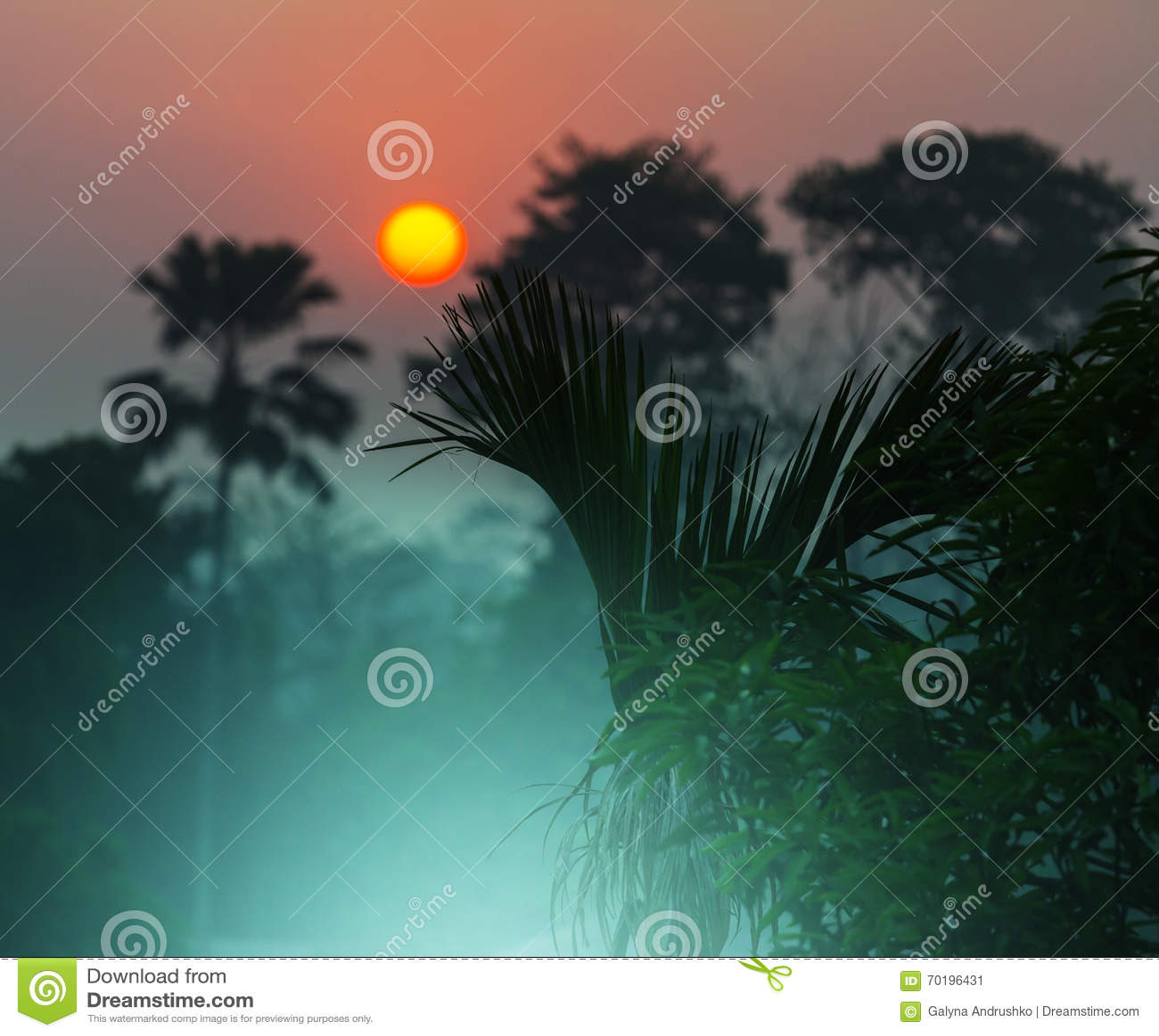 Nepal djungel