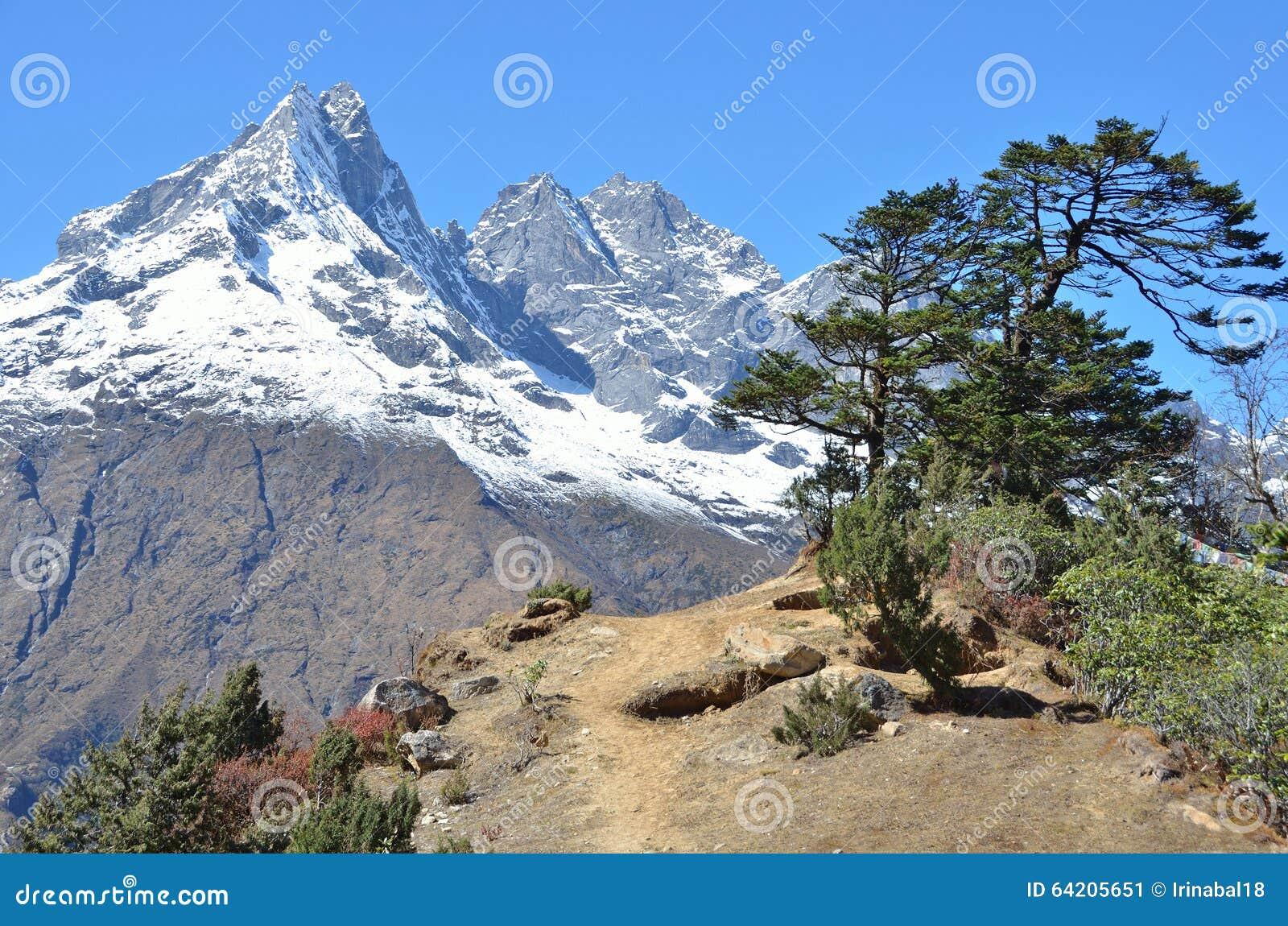 Nepal, Himalaya, paisaje de la montaña en una altitud de los metros 3800 sobre nivel del mar