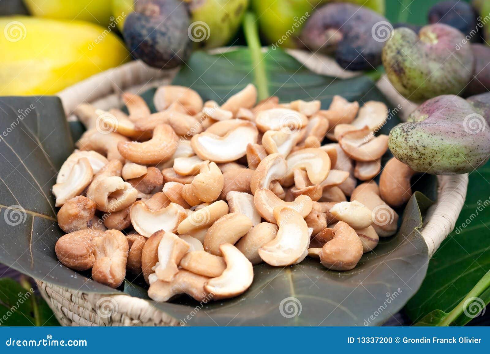 Nerkodrzewu owoc dokrętki