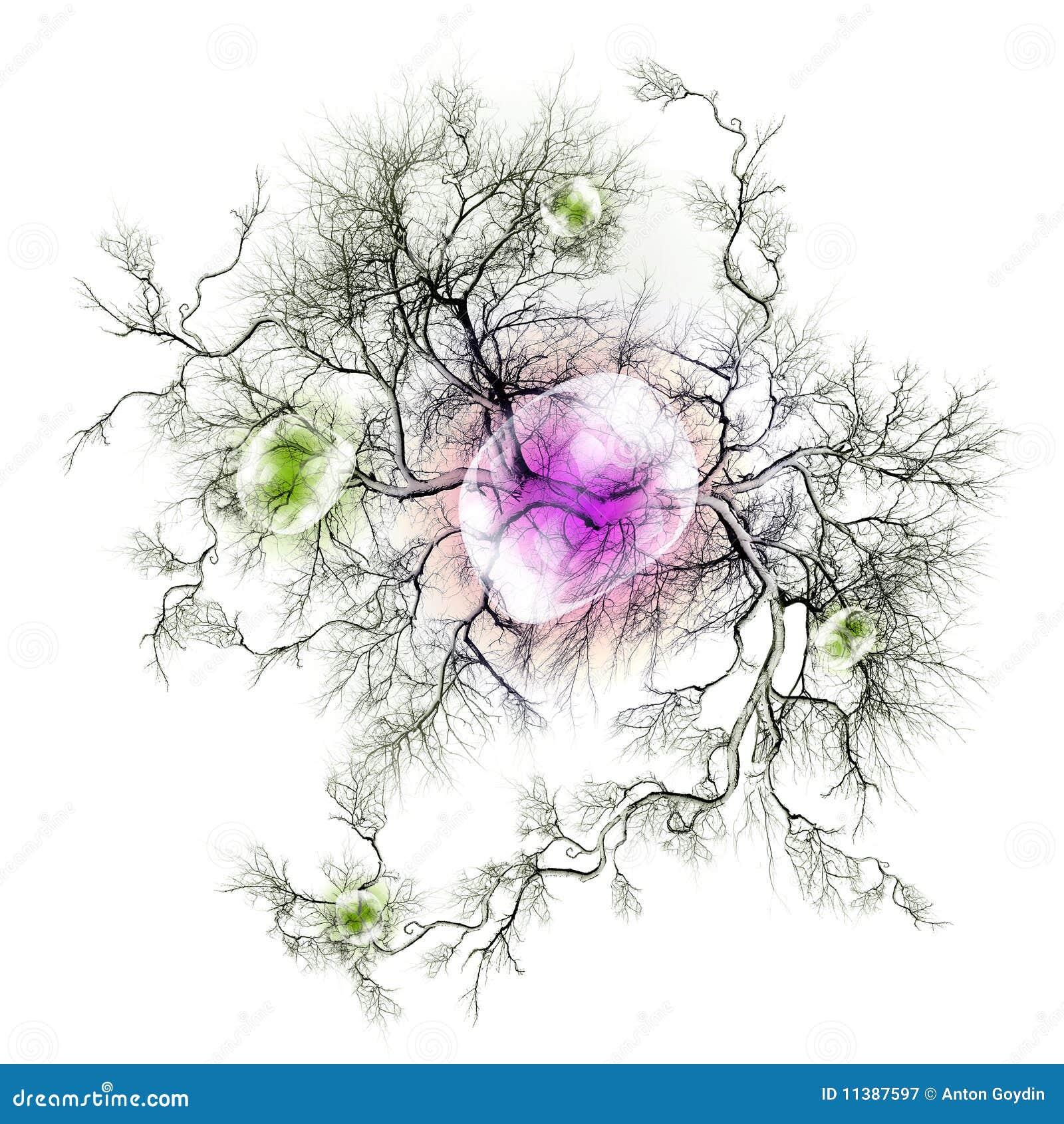 Nerves And Nerve Endings Stock Illustration Illustration Of Petal