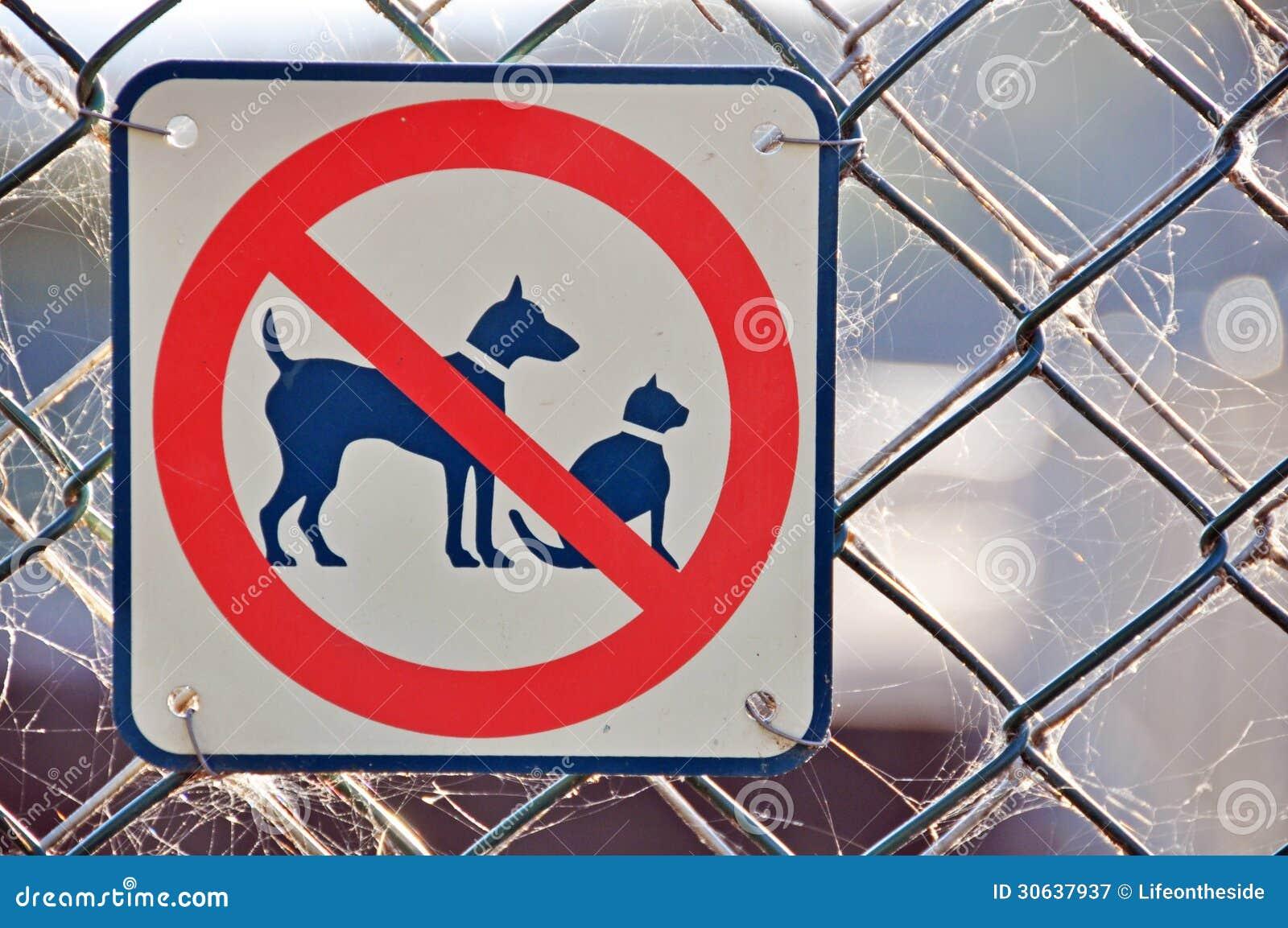 Nessun cane dei gatti permesso ha permesso il segno sul recinto