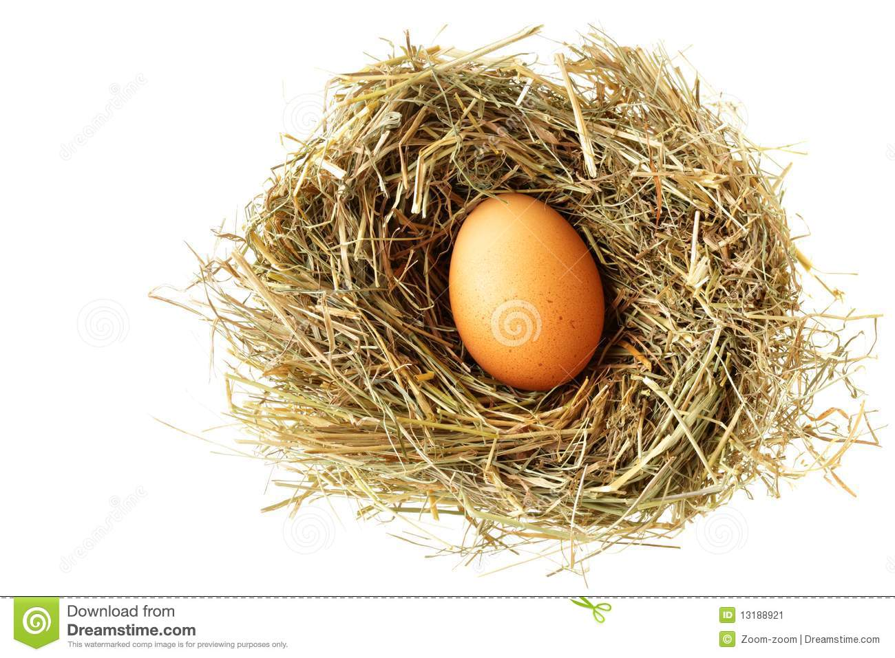 Nest with brown egg isolated over white background.