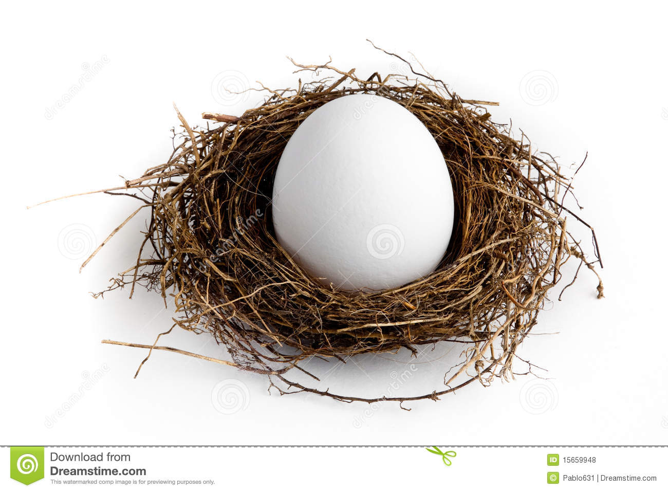 Download Nest Egg stock photo. Image of white, plan, savings, finance - 15659948