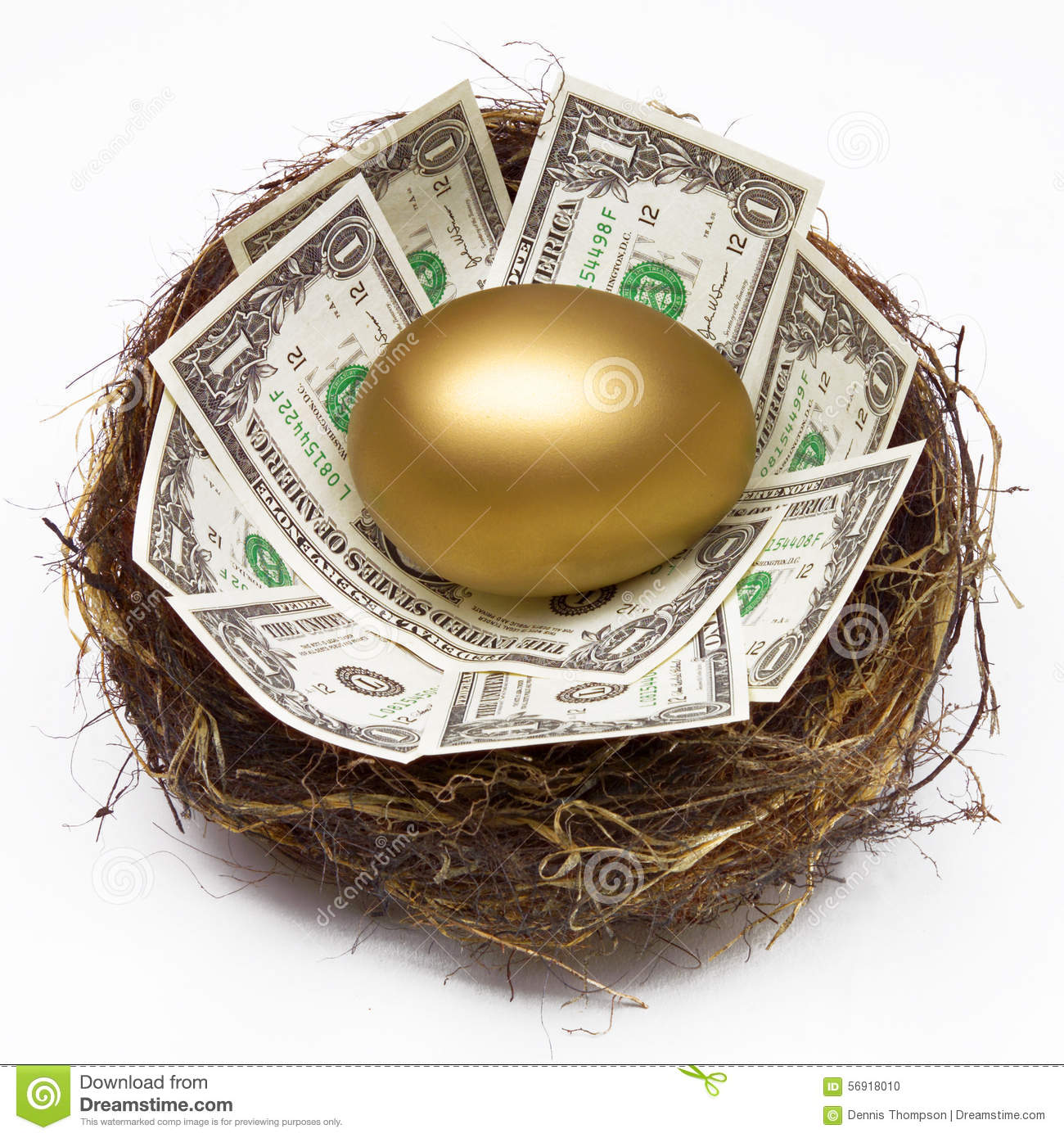 Download NEST EGG SAVING RETIREMENT FUND FINANCIAL WEALTH PLANNING Stock Photo - Image of fortune, dollars: 56918010