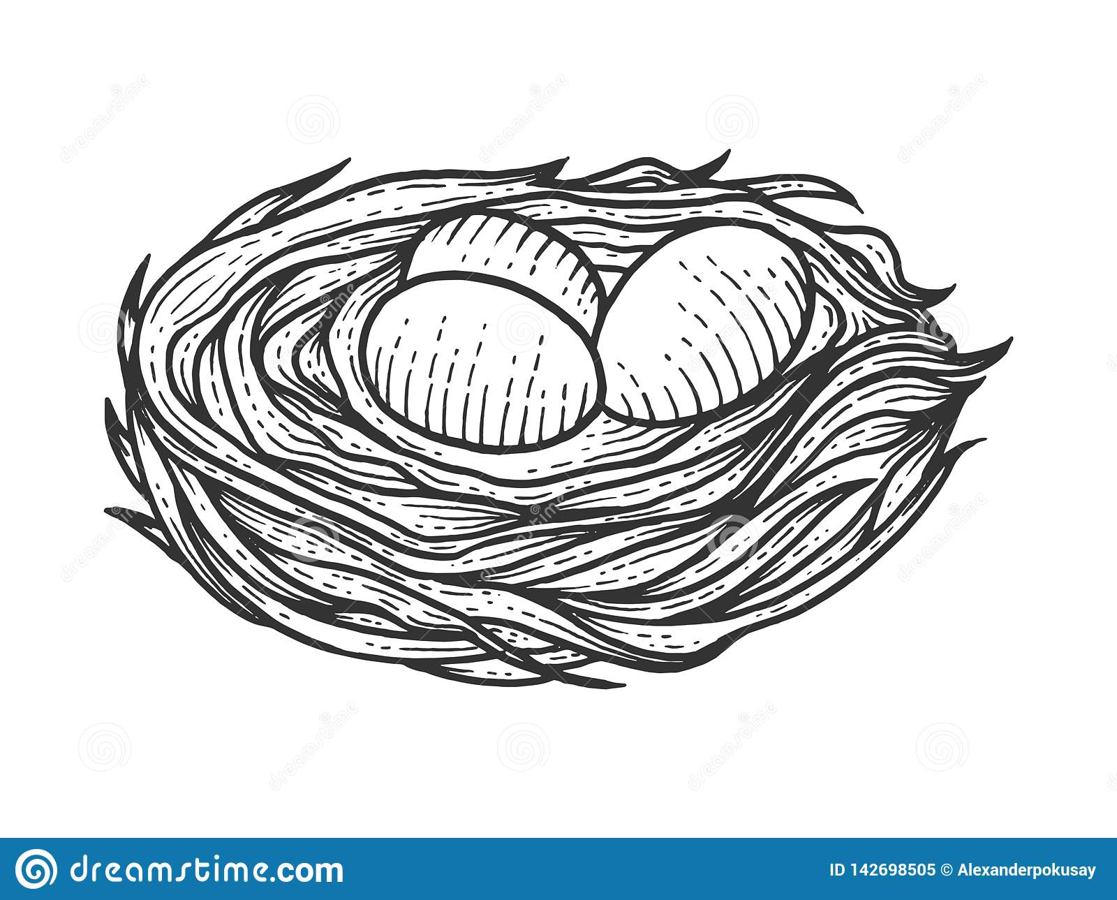 Nest clipart black and white, Picture #1731018 nest clipart black and white