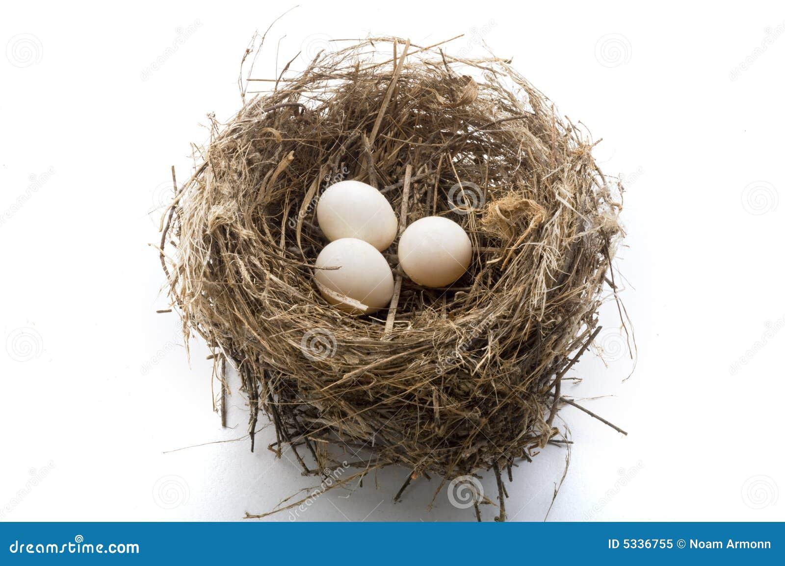 Nest en eieren