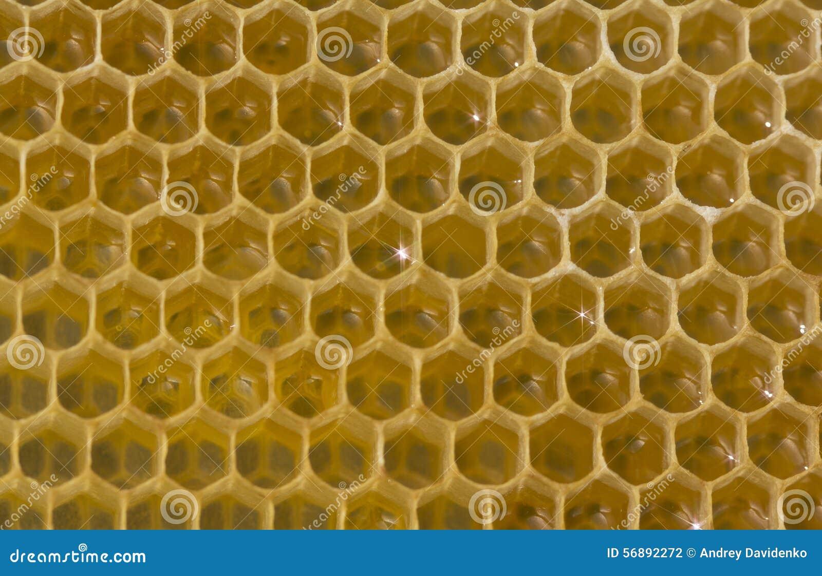 Nettare e miele nel nuovo pettine