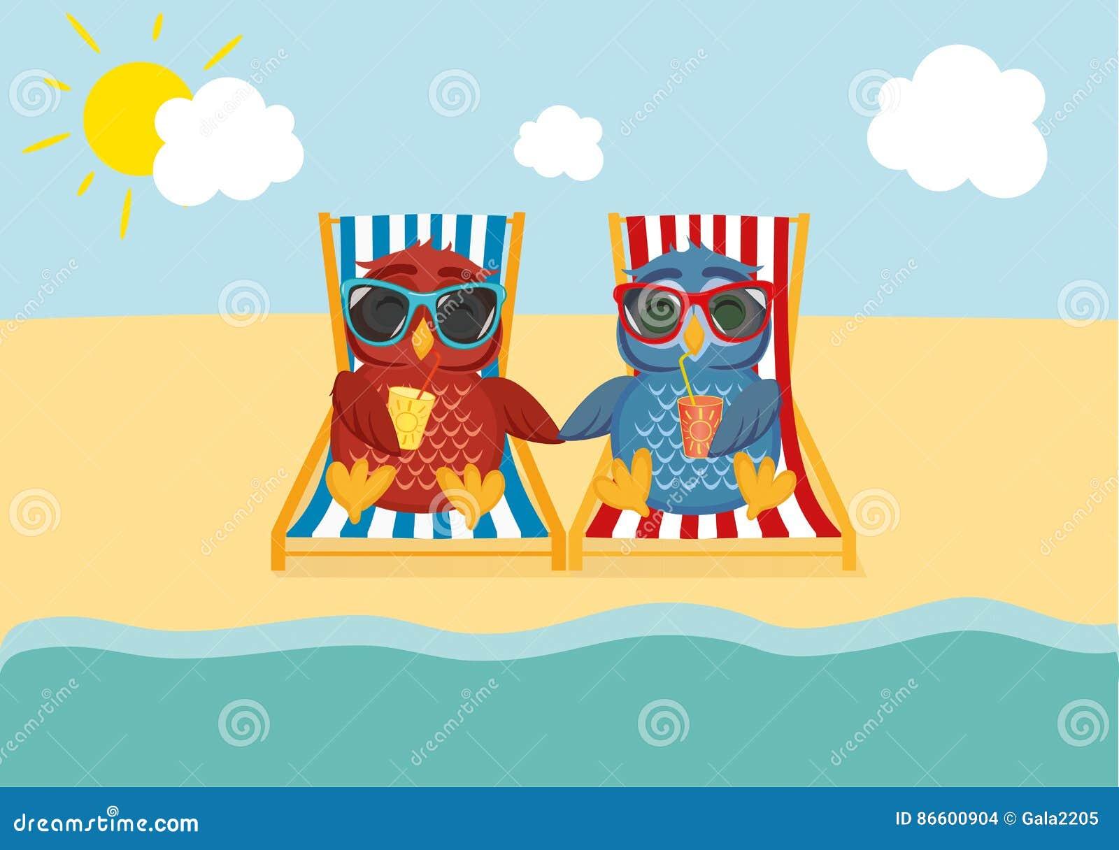 Nette Zwei Eulen Mit Der Sonnenbrille Im Urlaub, Die Auf Dem