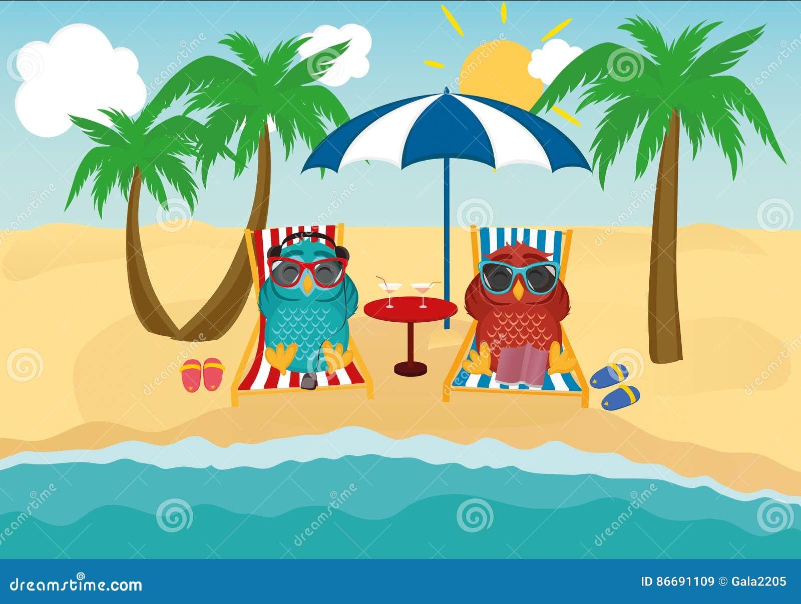 Nette Zwei Eulen Mit Der Sonnenbrille Im Urlaub, Die Sich