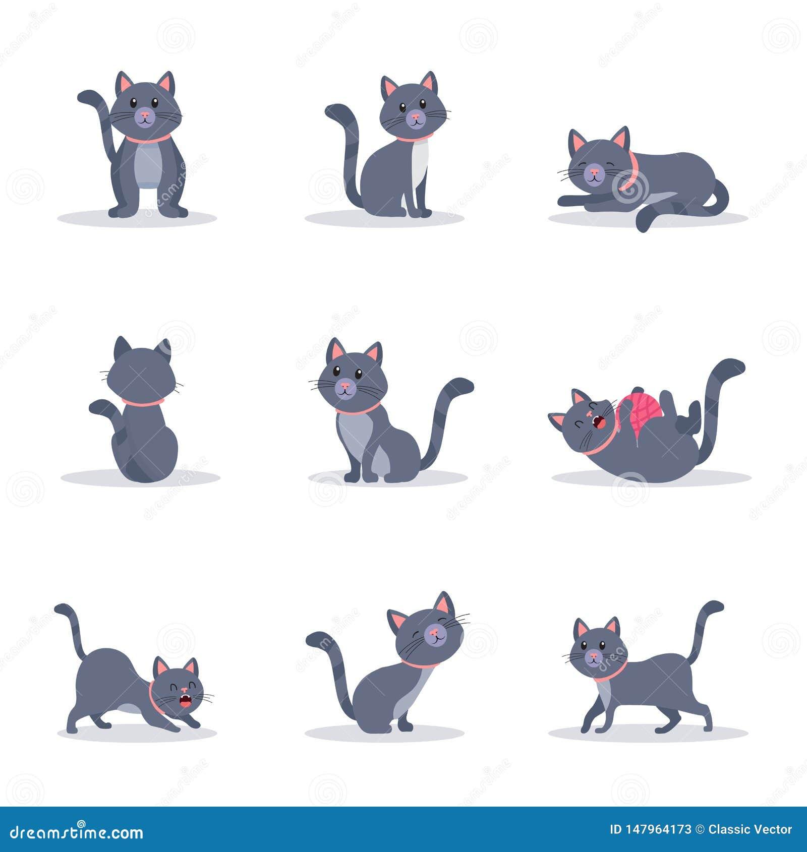 Netter grauer Katzenvektor-Farbillustrationssatz