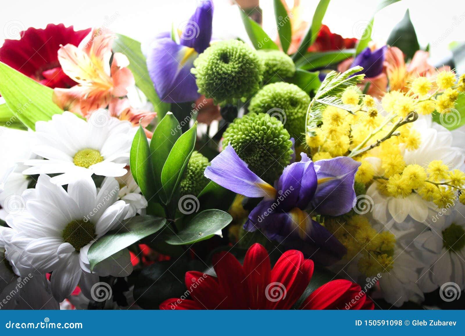 Nettes Foto von Blumen