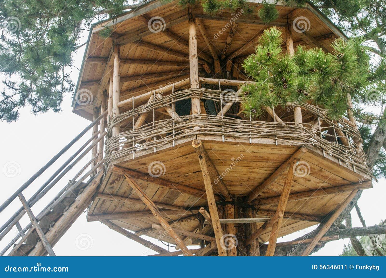 Nettes Kleines Baumhaus Stockbild Bild Von Zicklein 56346011