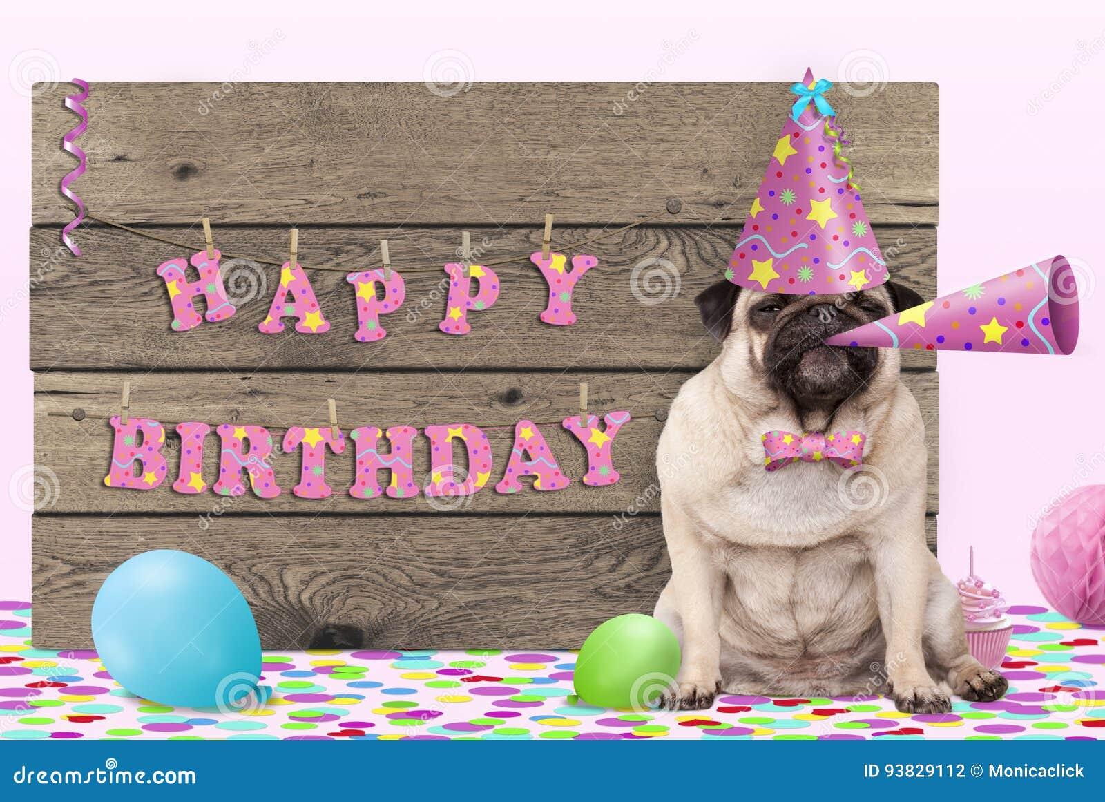 Nettes Pughündchen mit rosa Parteihut und -horn und Holzschild mit alles Gute zum Geburtstag des Textes