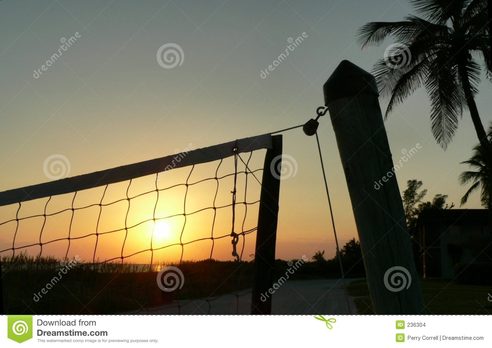 Netto volleyboll