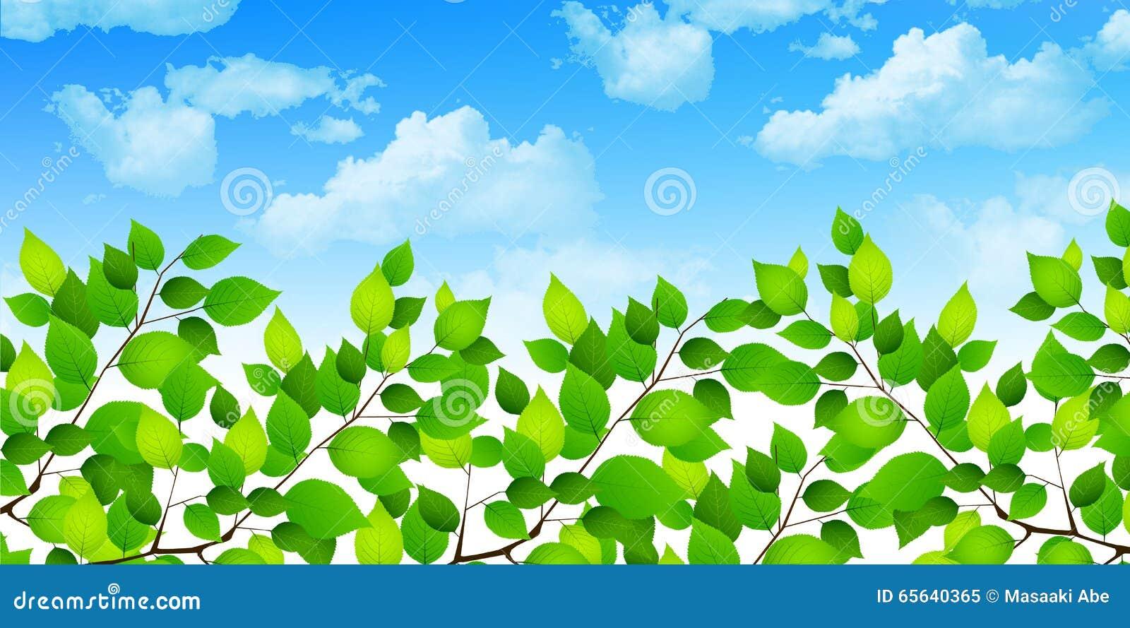 Nettoyez le fond vert frais