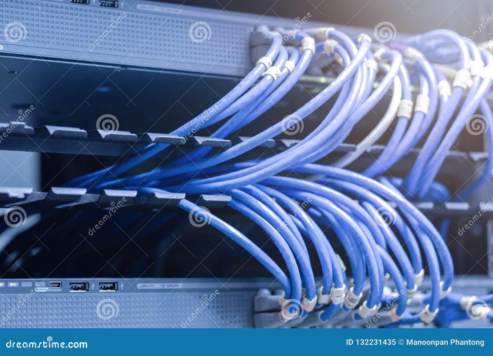 Netwerkkabels in netwerkschakelaars die worden verbonden