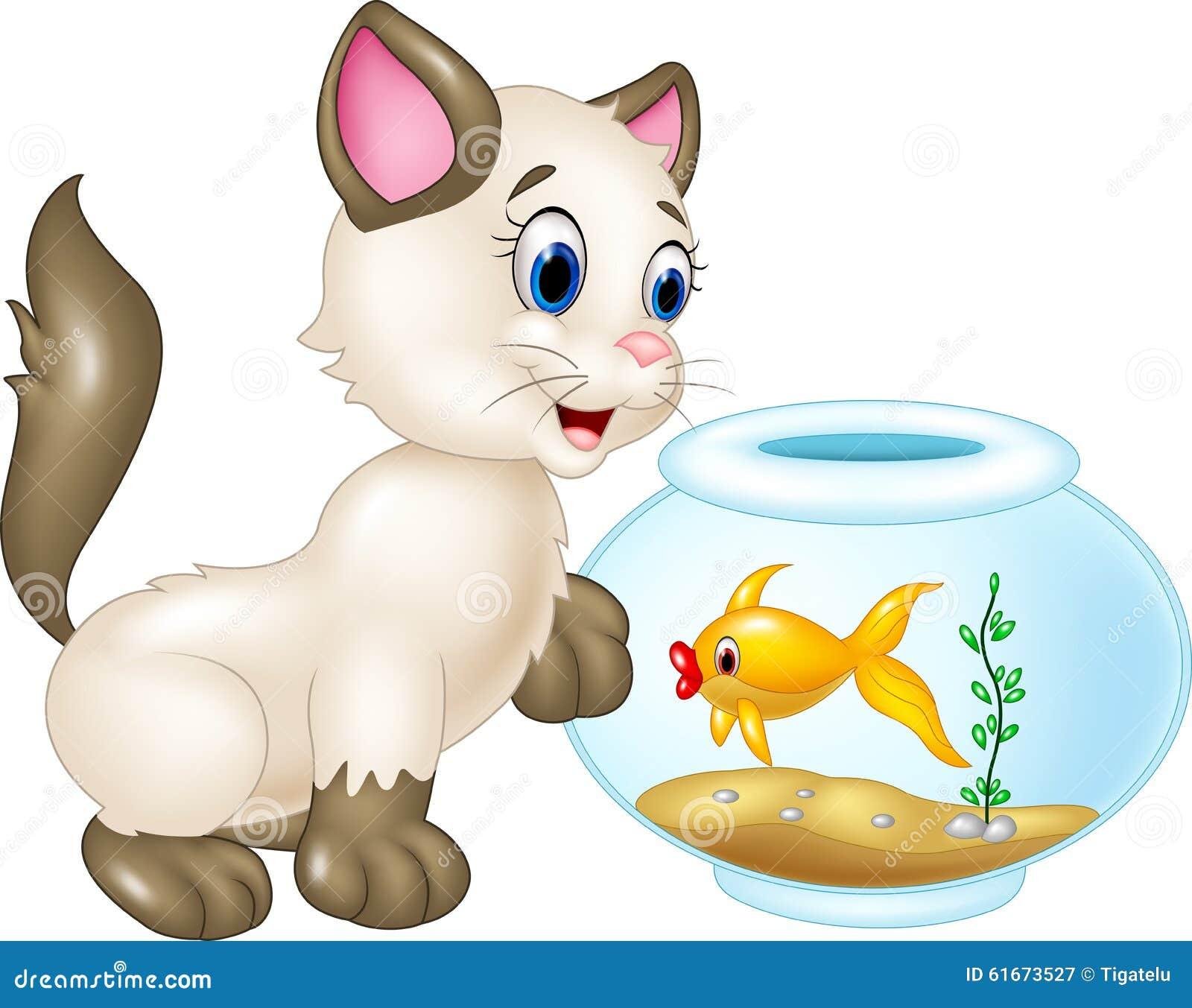 Neugierige Katze, die mit Schwimmenfischen auf weißem Hintergrund spielt