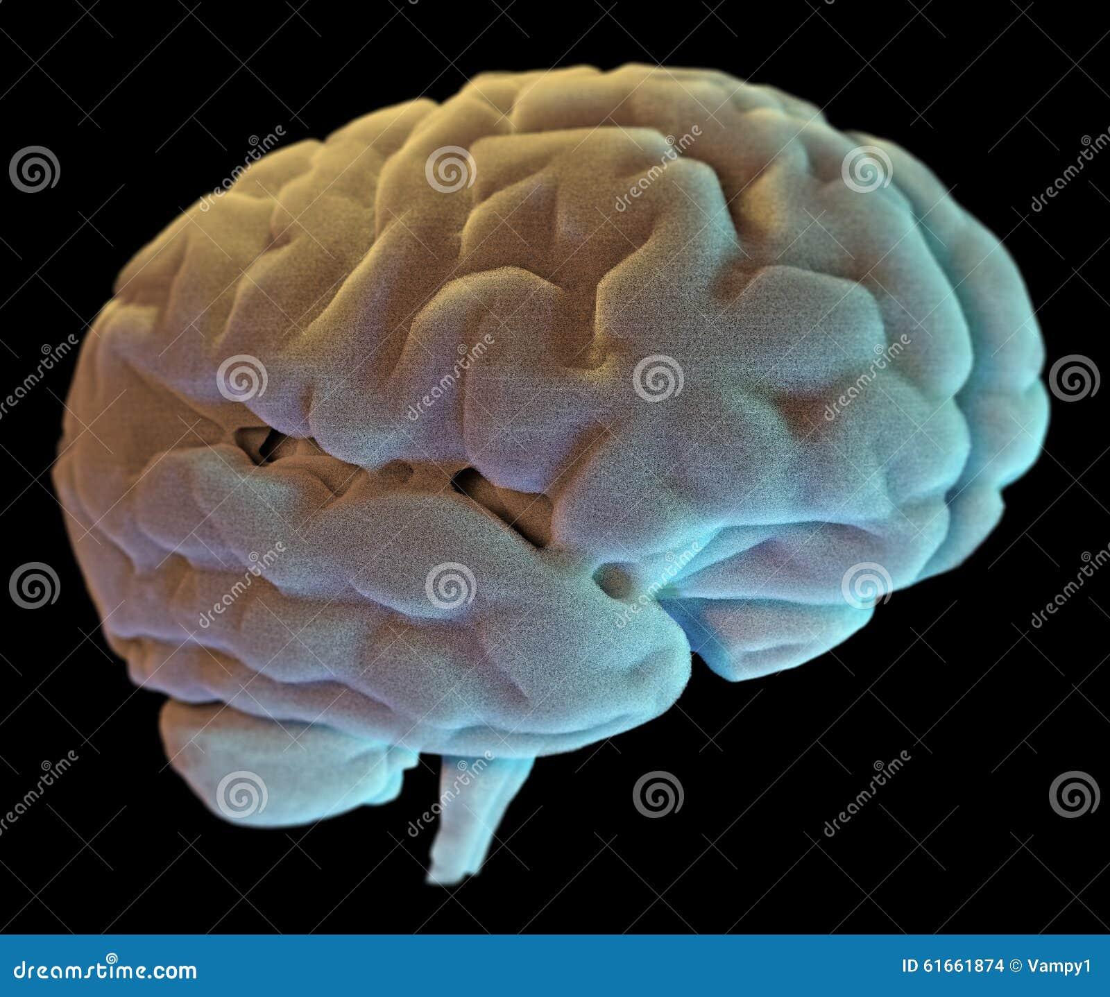 Neuronas Sinapsis, Enfermedad Del Cerebro Stock de ilustración ...