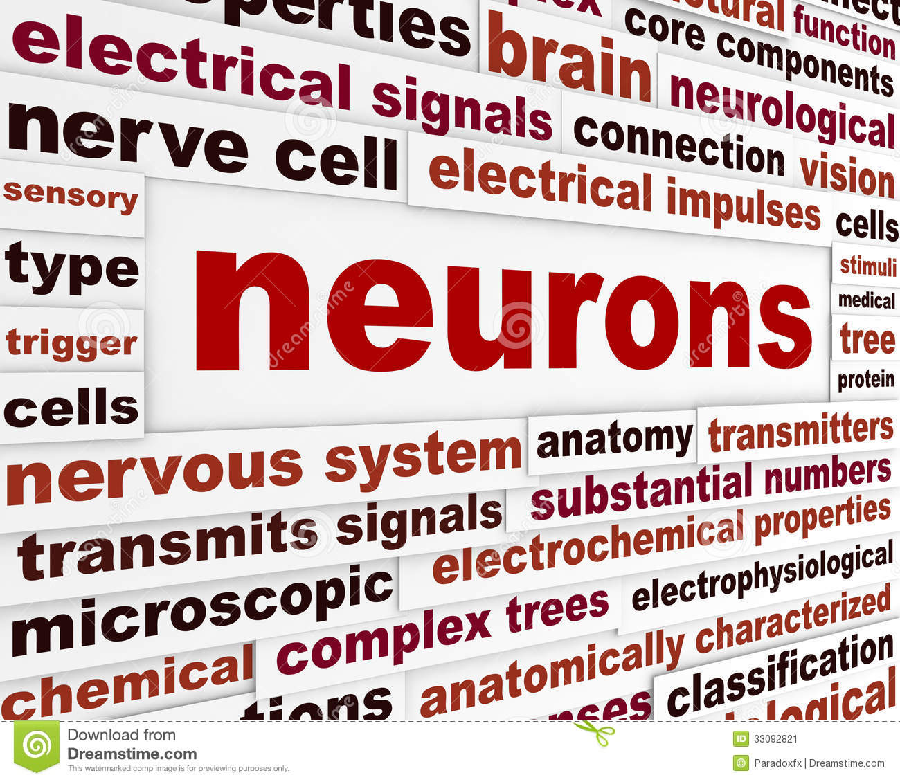 Neurons Scientific Words Poster Stock Image - Image: 33092821