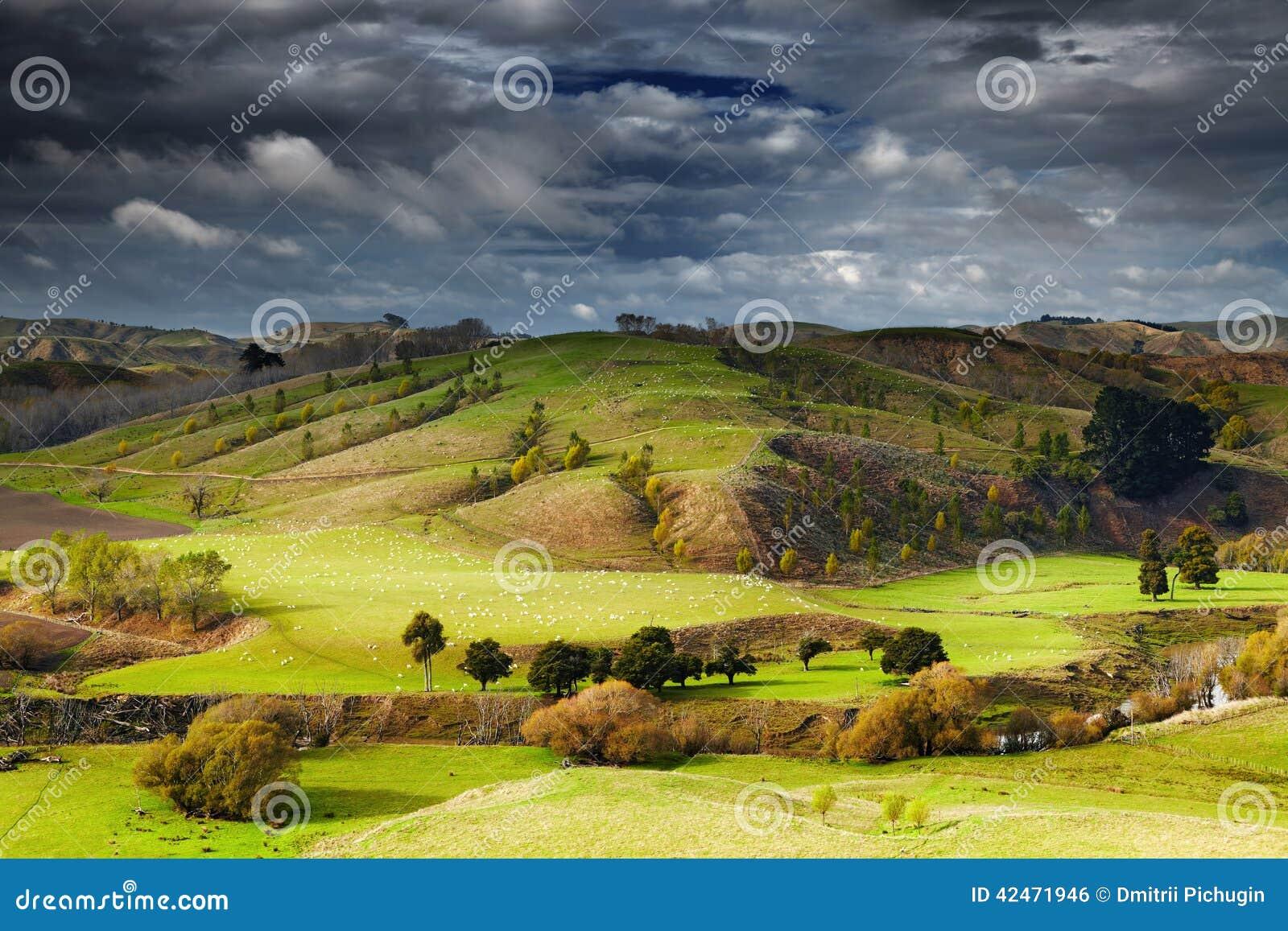 Neuseeland-Landschaft, Nordinsel